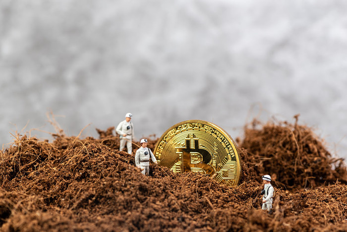 Digging Bitcoin How much can a miner earn in a day?